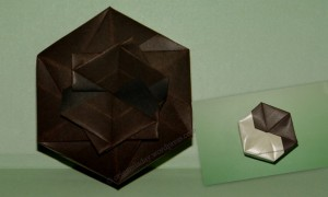 Origami Hexagon Box Collage