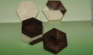 Origami Hexagon boxes