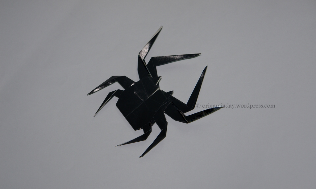 Spider An Origami A Day