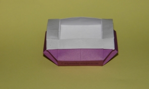 Origami Bonsai Box